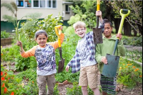East Tamaki School Garden to Table Support