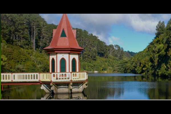 TEAM VOLUNTEERING: IMPROVING ZEALANDIA FOR THE FUTURE -  2020